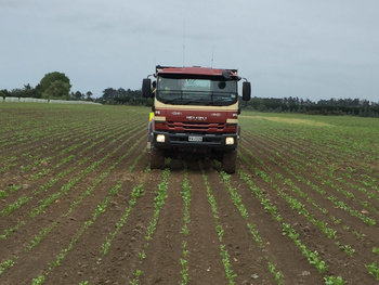 Our mid size spreader for all your fodder beet requirements